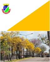 Amarelo na Bandeira do Município é referência aos Ipês Amarelos simbolo da cidade